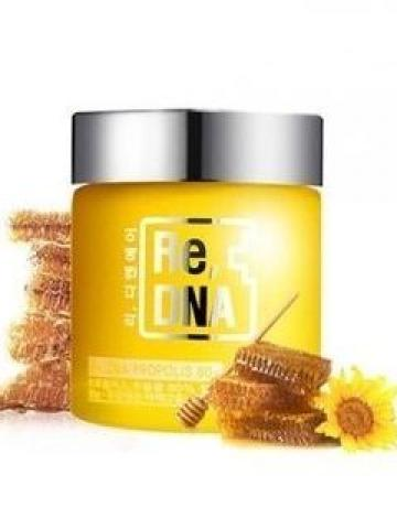 DAYCELL - Re,DNA Propolis Cream 20ml 20ml